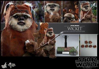 全新 Hot Toys 1/6 MMS313 Star Wars 星際大戰 Wicket 威奇特