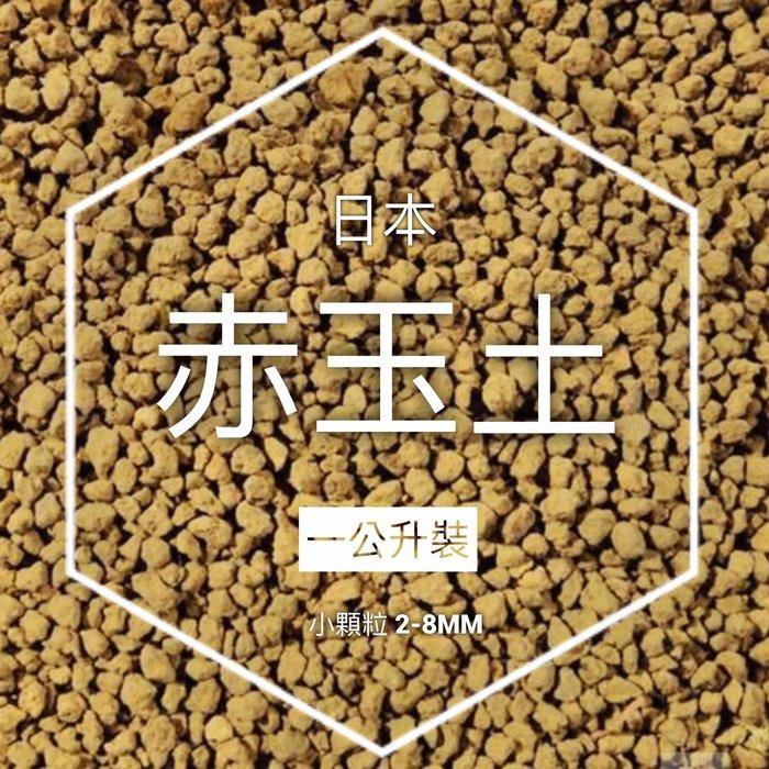 【小鮮肉肉】日本 赤玉土 2-8mm(1L裝)燒赤玉 鋪面 多肉介質 水草底砂 水耕適用