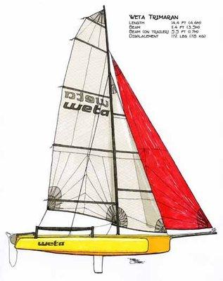 weta trimaran 3體帆船重型帆船laser雷射hobie獨木舟小船艇漁船遊艇水上摩托車沙灘車全新展示船出清價