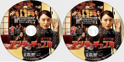 2009推理劇DVD:謎不可觸Untouchable【仲間由紀惠/要潤】2碟DVD