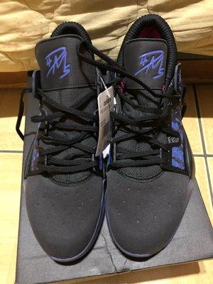 ADIDAS PRO VISION 黑藍 籃球鞋 US:9.5 EE6868