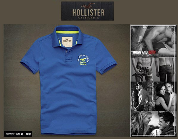 有型男~ A&F 副牌 Hollister 2013 春夏精典海鷗logo Embarcadero Polo blue 亮藍 真品 現貨 S M L XL