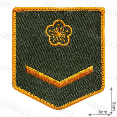 【ARMYGO】陸軍 士兵軍便服 階級臂章