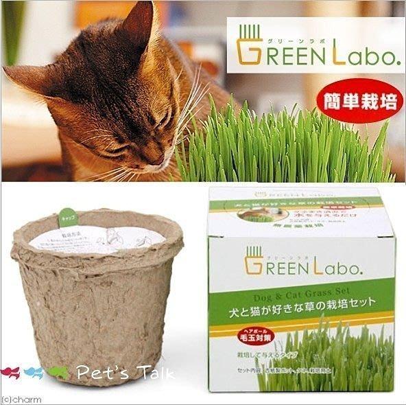 Pet's Talk~日本GreenLabo新鮮燕麥DIY貓草盆(貓貓狗狗都可吃)