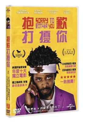 [DVD] - 抱歉打擾你 Sorry To Bother You ( 傳訊公司貨 ) - 預計4/25發行