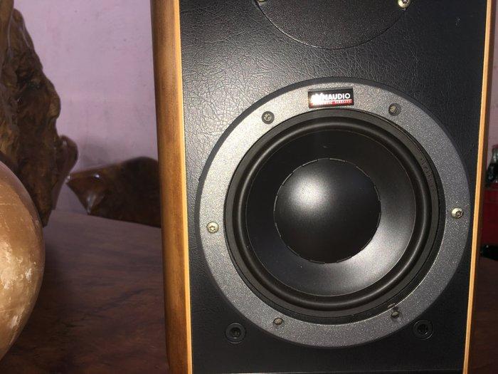 DNYAUDIO 頂級喇叭 發燒線 分音器 超越B&W 高音 低音 中音喇叭 旗艦