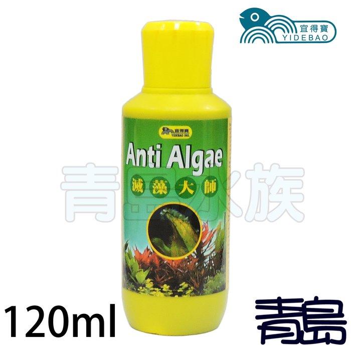 五月缺H&B。。。青島水族。。。台灣宜得寶------超級強力除藻劑(強力推薦) 藻可清 滅藻大師==120ml