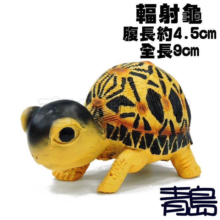 YU。。。青島水族。。。TQ-06手工原創 仿真陸龜模型 3D擬真模型 陸龜公仔 烏龜射紋龜==Q版/輻射龜