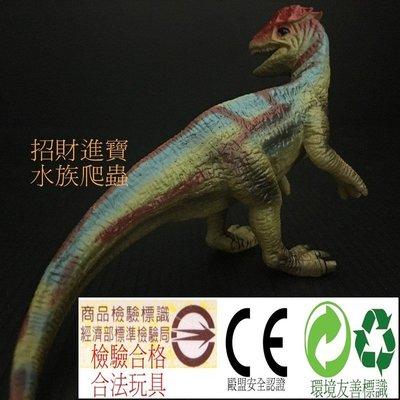 缺貨中雙冠龍 恐龍 玩具 模型 爬蟲類 侏儸紀 另售 迷惑龍 劍龍 暴龍 三角龍 腕龍 迅猛龍 棘龍 非PAPO