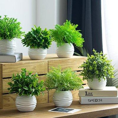 仿真盆栽 北歐ins仿真植物假草盆栽防尤加利客廳擺設盆景室內裝飾綠植擺件