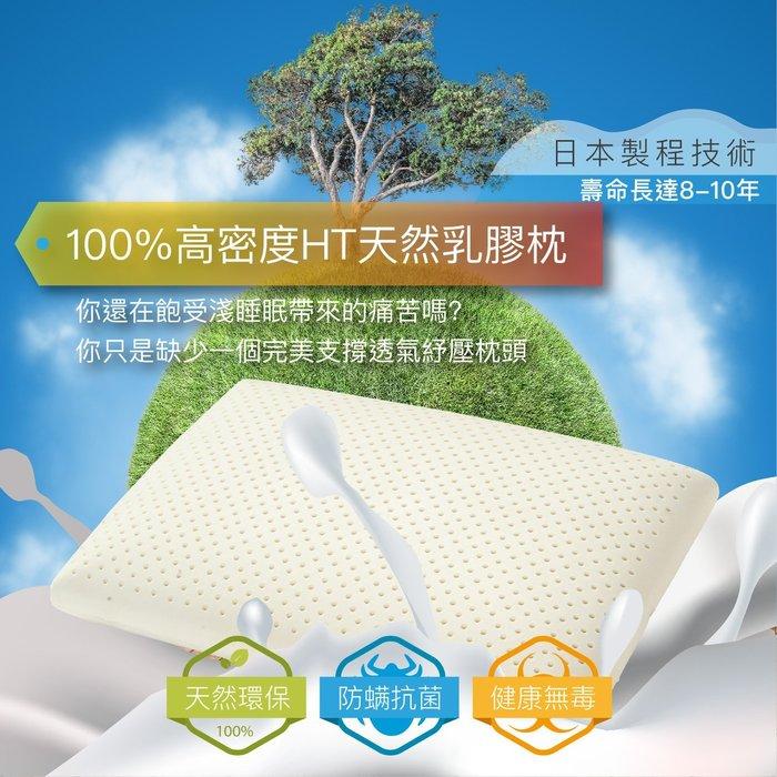 現貨 100%天然乳膠枕 標準型 高12cm Q彈型 SEK 防蹣 抗菌 泰國乳膠 日本製程技術 枕頭 任兩入免運