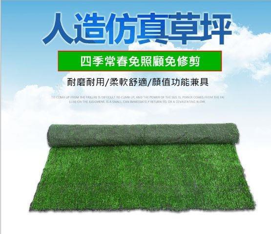 內有防燄實測影片【超柔軟仿真草皮】人工草坪2公分高 兒童地墊地毯 運動草坪 戶外 綠色草坪 人造草皮 綠植地毯 寵物