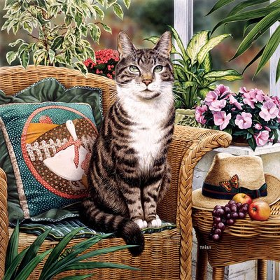 美國拼圖 mas.Geoffrey Tristram CAT-OLOGY 貓 .1000片拼圖,71248
