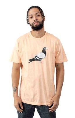 【Your Store】美牌 Staple Pigeon 2020春季新款 Global 大鴿子 Logo 短T 蜜桃色