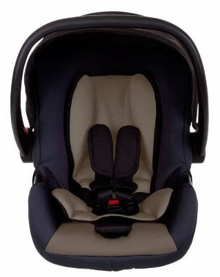 ㊣USA Gossip㊣ Mountain Buggy Protect Infant Car Seat 提籃
