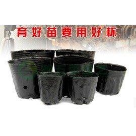【營養杯-加厚-塑膠-口13*12cm...