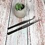 BEAGLE (一組/ 2支) 多肉植物工具 園藝工具- ...