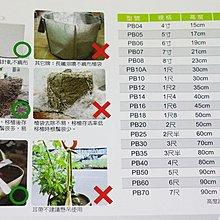 【園藝城堡】 美植袋 移植袋 1尺(有耳帶)   不織布移植袋 栽培移植袋
