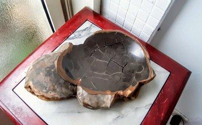 網花龜甲置物盤