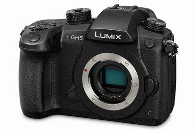 彩色鳥(租 相機 鏡頭)租 PANASONIC LUMIX GH5 / gh4 出租 V-LOG 3