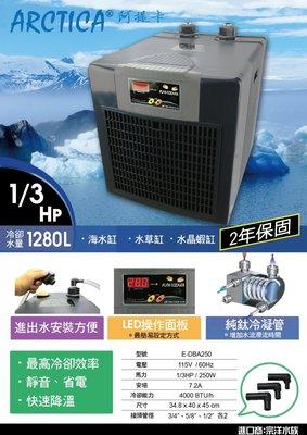 魚樂世界水族專賣店# 韓國製 阿提卡 DBA-250 1/3HP 冷卻機 適合水量1280L以下 原廠二年保固 冷水機