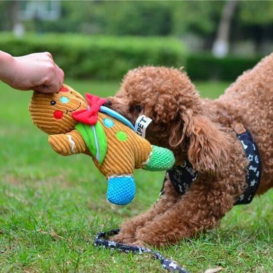 狗狗玩具發聲耐咬磨牙毛絨繩結寵物用品金毛泰迪幼犬大中小型犬