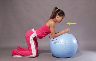 ALEX 丹力 B-2902 韻律球 抗力球 瑜珈球 台灣製造 直徑65公分 耐90公斤