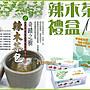 【三鳳辣木茶1盒裝】三鳳科技《奇蹟之樹100...