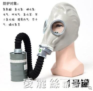 防毒面具全面罩工業化工氣體農藥消防氨氣防有機蒸汽全封閉面具 尚美優品