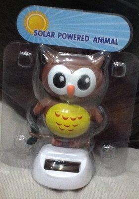 全新貓頭鷹太陽能可動玩偶
