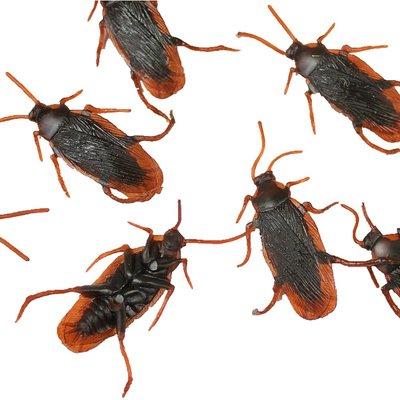 ☆天才老爸☆→【仿真蟑螂】整人玩具 仿真蟑螂 塑膠蟑螂 整人蟑螂 假蟑螂小強 玩具 假蟑螂 團康活動 露營 開玩笑 批發