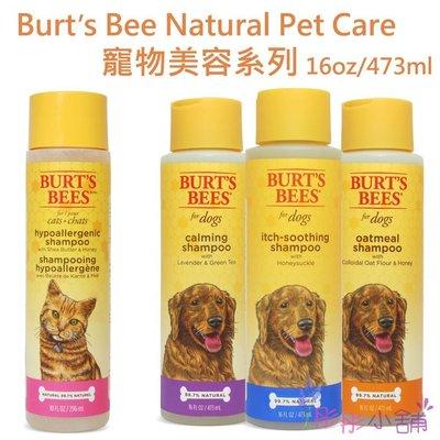 【彤彤小舖】Burts Bees Natural Pet Care 寵物美容系列 寵物洗毛精 無香精 475ml
