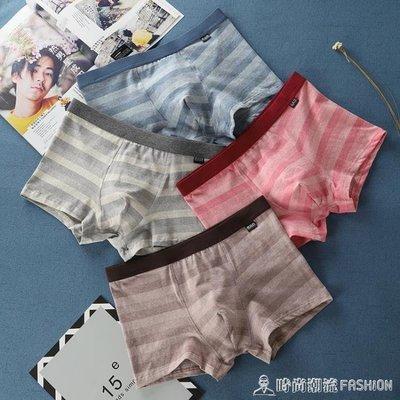 ZIHOPE 男士條紋平角內褲頭純棉質新款潮韓版青年學生個性透氣四角短底褲ZI812