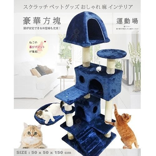 含運-日本寵喵樂《豪華方塊 貓跳台/貓爬窩/貓抓》 TW003 藍色/咖啡色 可選