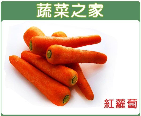 【蔬菜之家】C01.紅蘿蔔(胡蘿蔔)種子5.2克(約3000顆)(日本進口黑田五吋.甜度高.適生鮮用.不宜長時冷藏)