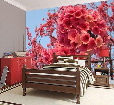 客製化壁貼 店面保障 編號F-426 日本櫻花 壁紙 牆貼 牆紙 壁畫 星瑞 shing ruei