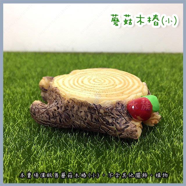 台北►►多彩水族◄◄嚴選《蘑菇木樁  / 小》水族 魚缸 鄉村 田園 造景及桌上擺飾 多肉 微景觀