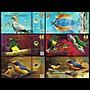 森羅本舖 現貨實拍 三張一套 大西洋沿岸森林 非洲翡翠杜鵑 澳洲塘鵝 紫羅蘭雀 精美鳥鈔  鈔票 紙鈔 紀念鈔 商業