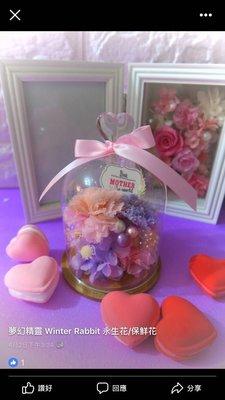 康乃馨 保鮮花 母親節禮物 粉紅色 紫色 winter rabbit 夢幻精靈 永生花