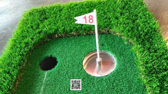 全新 高爾夫推桿練習草皮 50cm×300cm 雙洞 +洞盃 推桿進步的秘密武器