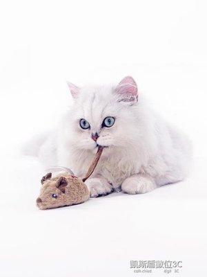 貓玩具電動假老鼠逗貓棒仿真小老鼠自動逗貓幼貓用品小貓咪的玩具