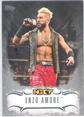 2016 TOPPS WWE UNDISPUTED #NXT-17 ENZO AMORE 限量50張 特殊卡 26/50