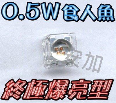 光展 終極爆亮0.5W 凸.平頭-食人魚LED 四晶片 many.新勁戰.CUXI.GT 焊接 汽機 100顆800元