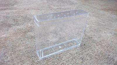 【虫話森林】甲蟲幼蟲透明觀察盒,獨角仙、昆蟲、大兜、鍬形蟲