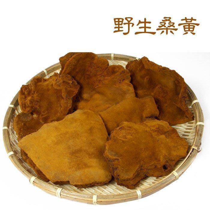 ~野生桑黃(半斤裝)~ 含有多種營養成分。【豐產香菇行】