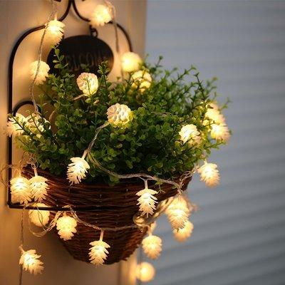 松果聖誕燈串10公尺/米80燈條 LE...