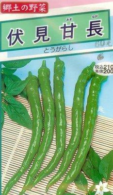 ~大包裝蔬菜種子~伏見甘長辣椒(糯米椒),無辣味的甜辣椒,平地2月~10月 種植