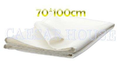 ╭☆凱薩小舖☆╮【IKEA】LEN 嬰兒床墊防水保潔墊 70*100 cm- 便利 全利 台中市