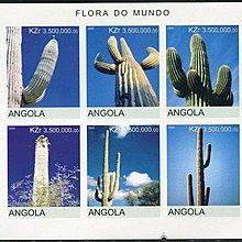 美國郵票安哥拉2000年仙人掌全新郵票沒有齒孔