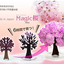 日本 マジック桜ミニ    Magic Sakura Mini 包平郵費